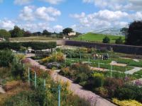 National_Botantic_of_Wales4